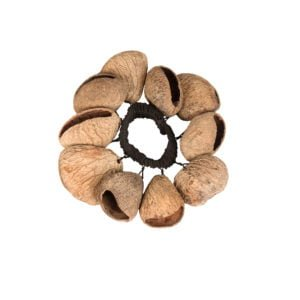 This is a product image of the Bracelet Shaker - Pangi. It has a black elastic strap with brown Pangi shells attached all the way around.